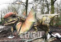 Dinosaur Skeletons--Dilophosaurus