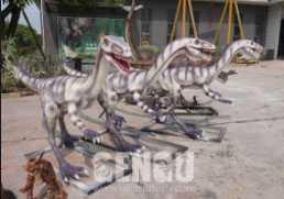 Microraptor - Chicken