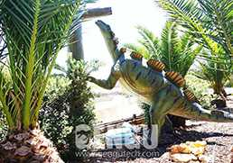Animation Dinosaur Common Fault