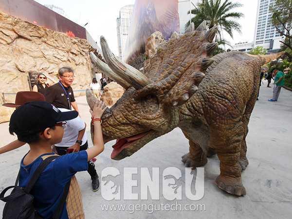 Triceratops Costume(DC-34)
