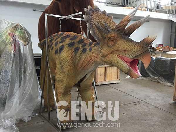 Triceratops Costume(DC-35)