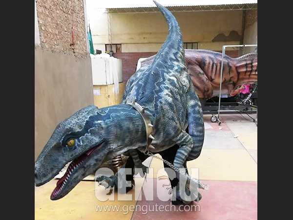 Velociraptor Costume(DC-52)
