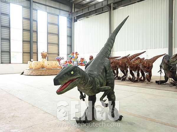 Velociraptor Costume(DC-56)