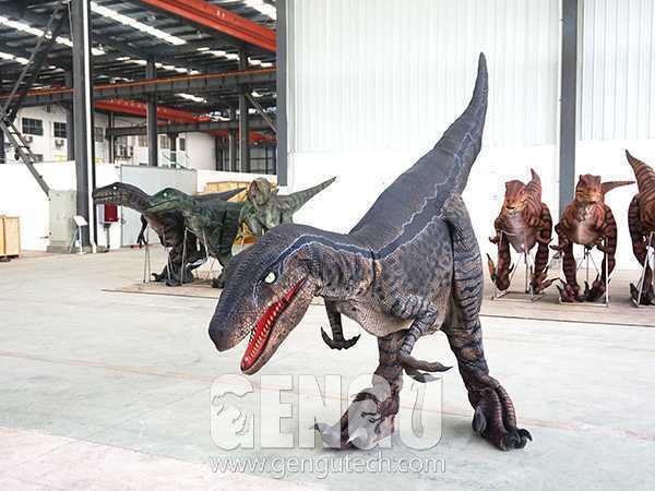 Velociraptor Costume(DC-57)