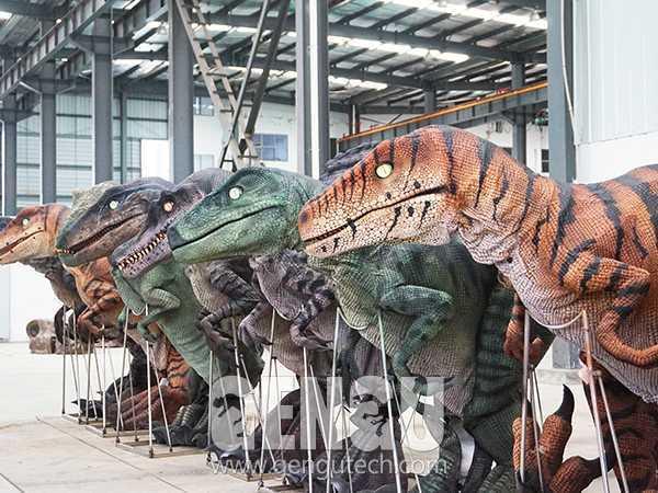 Velociraptor Costume(DC-61)