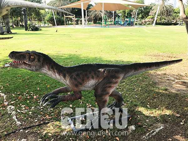 Velociraptor(AD-136)
