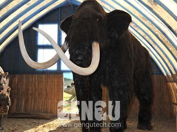 Mammoths(AA-173)