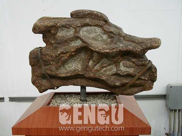 Dinosaur Skull(FP-191)