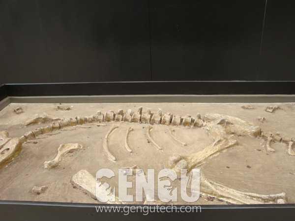 Dino Buried Statue(FP-204)