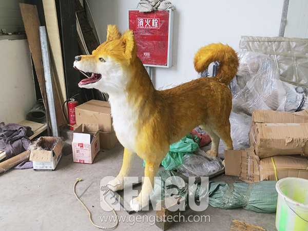 Dog(AA-31)