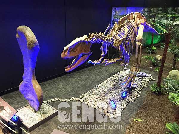 T-Rex Fossil(FP-251)