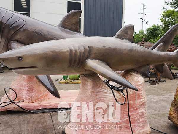 Shark(AA-316)