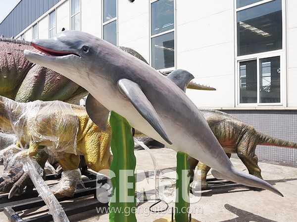 Dolphin(AA-343)
