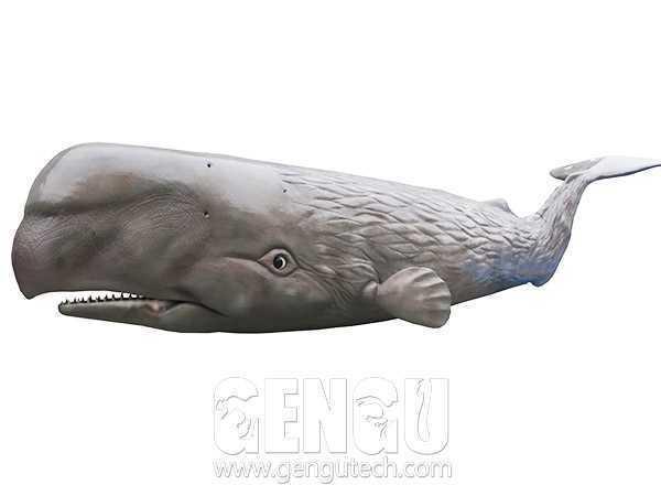 Sperm whale(AA-385)
