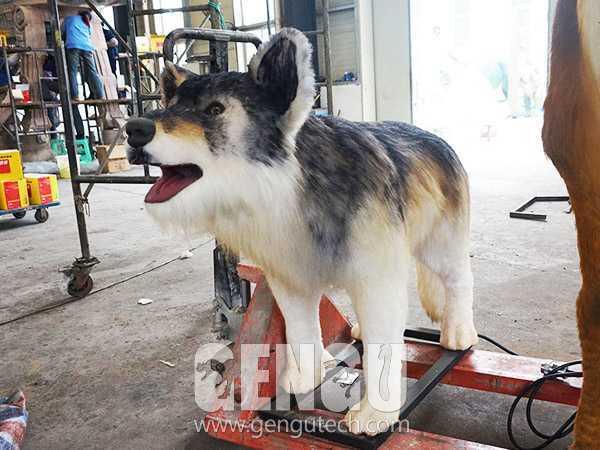 Dog(AA-536)