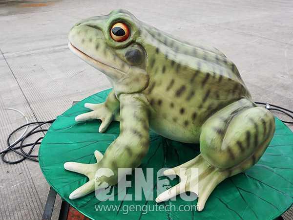 Frog(AA-558)