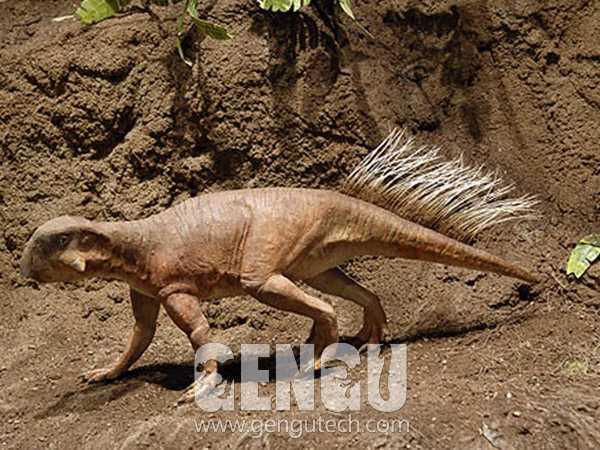 Psittacosaurus(AD-588)