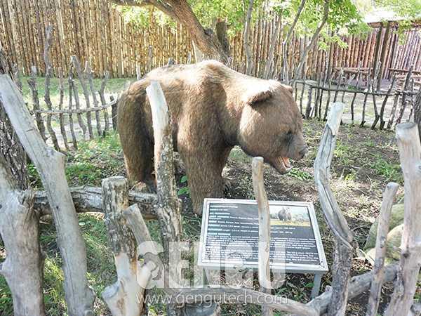 Brown Bear(AA-610)