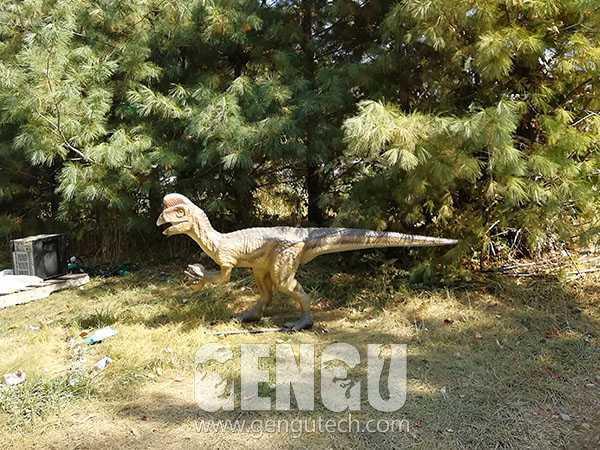 Oviraptor(AD-621)
