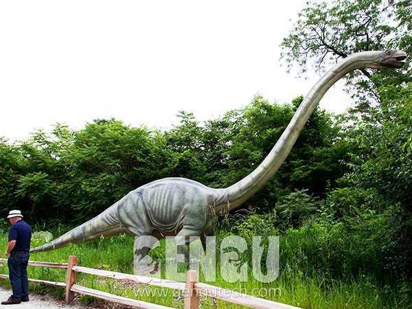 Omeisaurus(AD-637)