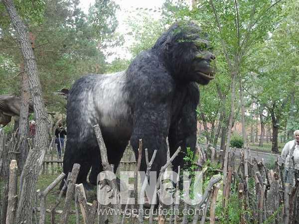 Gorilla(AA-679)