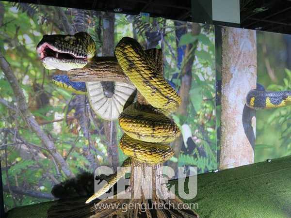 4(Snake)