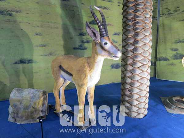 Antelope(AA-695)