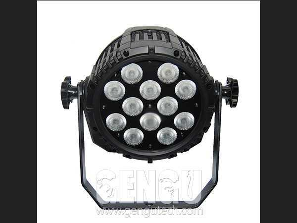 LED Par Light (12 LEDs 8W)