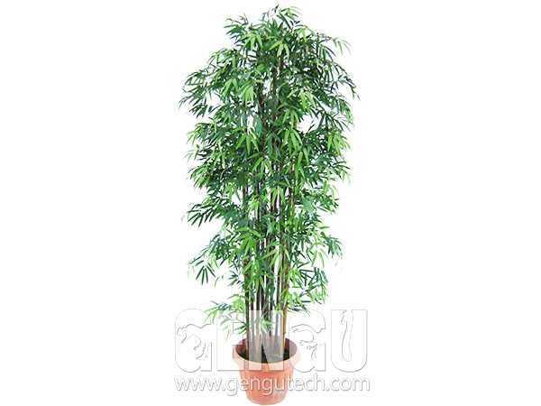 Bamboo(AP-936)