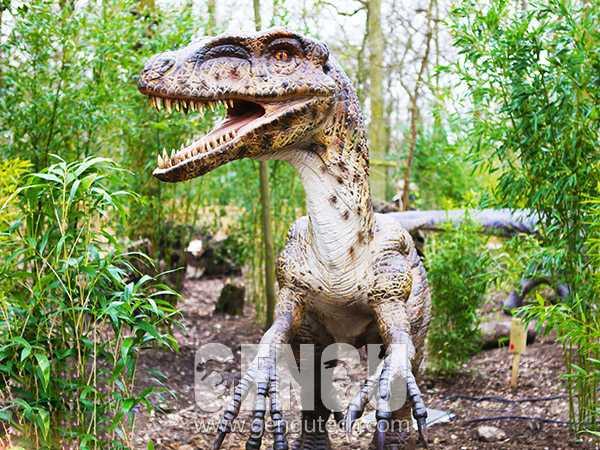 Velociraptor(AD-987)