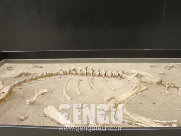Dino Buried Statue(FP-1012)