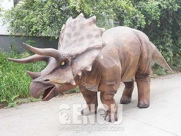 Triceratops Costume(DC-1111)