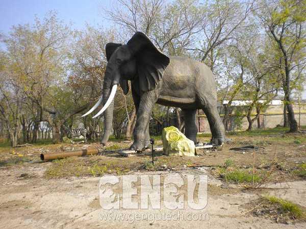 Elephant(AA-1253)