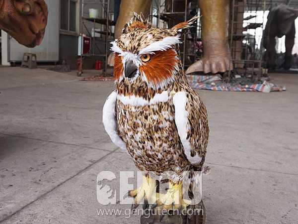 Owl(AA-1255)
