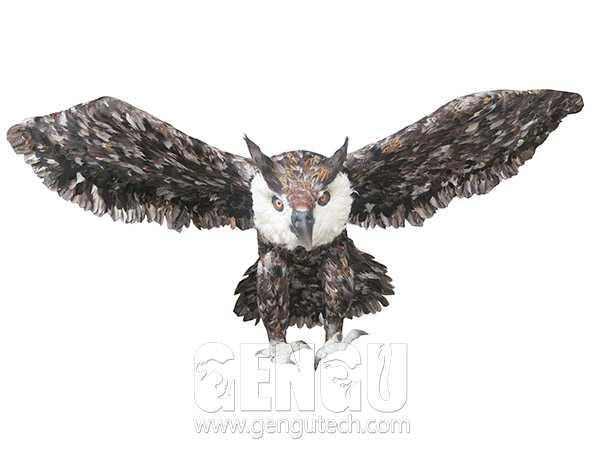 Owl(AA-1256)