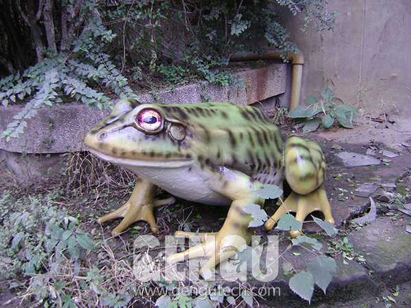 Frog(AA-1248)