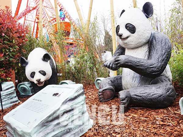 Panda(AA-1354)