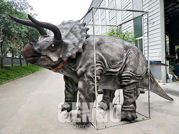 Triceratops Costume(DC-1384)