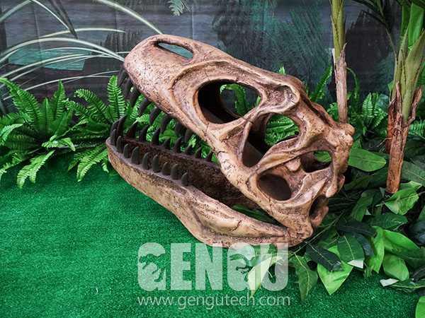 T-Rex Skull(FP-1489)